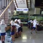 【天竜川水族館】 天竜川とその周辺に生息する魚、水生昆虫、カメ、カエル、イモリ、エビ、ザリガニなど、様々な生き物を常時展示しています。