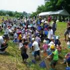 【かわらんべ祭り】 毎年大人気のプログラム「小川で魚つかみ」の一コマ。