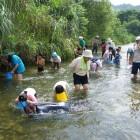 【かわらんべ講座】 天竜川とその周辺河川を環境を対象とした講座を運営しています。天竜川をはじめ、支流やその水源まで足を延ばし、伊那谷の自然のすばらしさを体感いただきます。