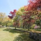 もみじ平マレットゴルフコース(27ホール)1人500円(用具付、カードは4人で1枚) 営業期間:5月~10月