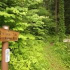 南沢山への登山口園内に2ヶ所あります。