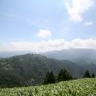 【左の小山】萬岳荘から登ってきて左の小山に登ると恵那山が目前に。休日にはグライダーが飛んでいることも。風が気持ちいい。カップルで来るなら、静かでお勧めです。2人でゆっくり愛を語ってね。