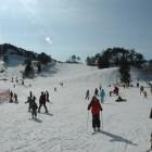 平谷高原平谷高原には一年を通じ楽しめるところが一杯です。春から秋にかけてはフィッシングスポットの他に、コテージ、温泉にプール。冬には平谷高原スキー場や温泉が皆様のお越しをお待ちしております。