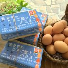 絹田夫妻が生産している「青見平のたまご屋さんのたまご」鶏の食べているもの、住んでいる鶏舎、環境のすべてが安心できます。
