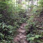 比較的登りやすいが、途中崩落箇所もあり注意。