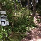 小八郎岳と烏帽子岳の分岐点。今回は小八郎方面へ。
