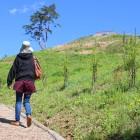 歩き心地の良いウッドチップ舗装の遊歩道