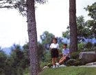 千鶴歌の径  明治35年泰阜村に生まれた「アララギ派」歌人金田千鶴が「夕日さす恵那のいただきよく見えてはては知られず澄める西空」の歌碑があります。