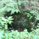 【井戸跡】 城の飲料水を確保した井戸跡。この城のお姫様が黄金の鶏を抱いて身を躍らせたという悲話を伝えています。元日の早朝には井戸の底で鶏が鳴く声が遠くかすかに聞こえるといわれます。