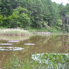 伝説の残る大池